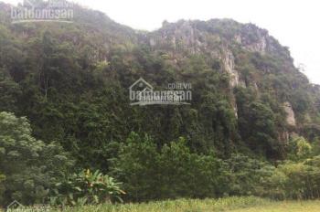 Cần chuyển nhượng quyền khai thác mỏ đá vôi tại Thái Nguyên