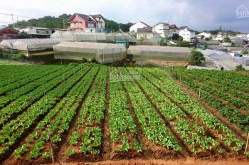 Bán đất xây khách sạn và homestay tại thành phố Đà Lạt, giá bán: 15 tỷ