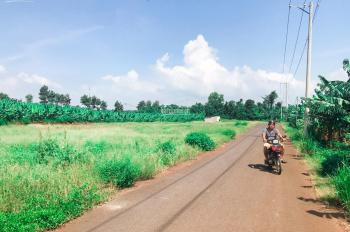 Bán đất mặt tiền đường nhựa cách đường Trảng Bom - Cây Gáo 200m