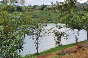 Bán đất mặt tiền lớn Lý Thái Tổ, Dambri, thành phố Bảo Lộc LH: 0934676275