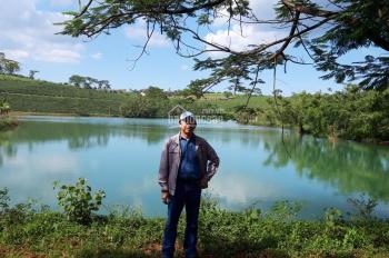 Đất nền thổ cư Bảo Lộc, gần hồ sinh thái, view đồi chè, chính chủ, chỉ 300tr/nền 108m2