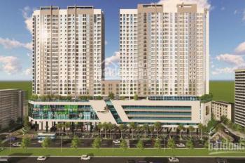 QL cho thuê văn phòng tại tòa The Golden Palm - Lê Văn Lương, DT 100m2, 250m2, 450m2. LH 0856655313