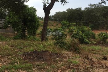 Bán 1ha (10611m2) đất vườn tại xã Phú Cường, Định Quán, Đồng Nai