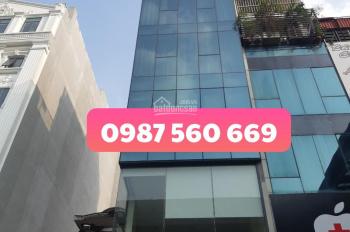 Cho thuê nhà mặt phố Trần Quang Diệu - Đống Đa, DT tầng 1 - 90m2, từ tầng 2 - 7 105m2, 0987 560 669