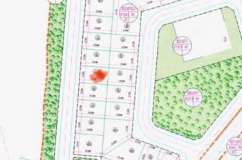 Bán đất biệt thự 240m2 hướng Đông Nam khu B Geleximco Lê Trọng Tấn giá 5.8 tỷ. LH 0911716499