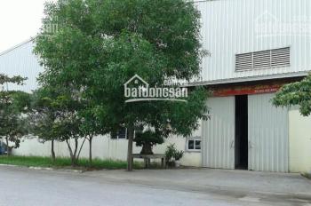 Cho thuê kho xưởng 1500m2, 3000m2, 10.000m2 tại CCN Tân Quang, Văn Lâm. LH: 0903425299