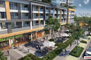 Chính chủ cần bán căn hộ 66m2, 2PN, khu Emerald - Celadon City - liền kề Aeon Tân Phú, 2,6 tỷ