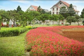 Chính chủ cần bán biệt thự 200m2 gần đường Tây Thăng Long, liên hệ 0904413071