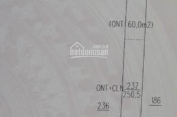 Bán đất mặt tiền kinh doanh. DT: 250m2 giá 1 tỷ 250tr tại Tân Thành, Bắc Tân Uyên