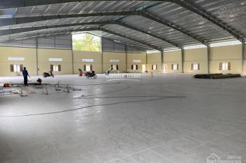 Cho thuê gấp kho 440m2 giá rẻ đường Lương Minh Nguyệt, Phường Tân Thới Hòa, Quận Tân Phú