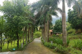 Bán 4500m2 biệt thự tại Tiến Xuân, Thạch Thất, Hà Nội. Khuôn viên hoàn hảo, có ao, giá bán 11 tỷ