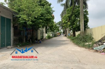 Bán 120m2 đất mặt đường An Đào, Trâu Quỳ, Gia Lâm, kinh doanh siêu đẹp. LH 097.141.3456