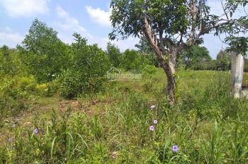 Đất vàng sân bay quốc tế Long Thành, vị trí đắc địa xã Cẩm Đường - Long Thành, gần Hương Lộ 10