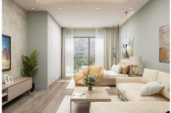 Cần bán căn hộ chung cư The City Light ngay TP Vĩnh Yên. LH: 0342755777 giá tốt từ chủ đầu tư