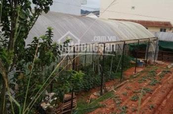 Bán gấp 2 lô đất nông nghiệp đường Xô Viết Nghệ Tĩnh - P. 7 - Đà Lạt