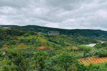 Đất XD view đẹp nhất Xuân Thọ - tp Đà Lạt