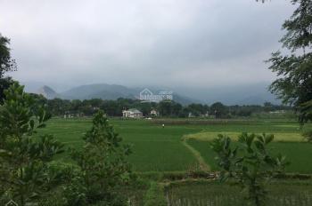 Cần bán 1063m2 đất bằng phẳng view cánh đồng giá vô cùng hấp dẫn tại Nhuận Trạch, Lương Sơn