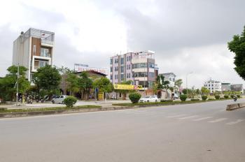 Bán đất đường Lê Hữu Tựu Nguyên Khê Đông Anh LH. 0966.656.531