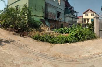 Chính chủ bán mảnh đất 200m2 tại Cổ Loa, Đông Anh, Hà Nội