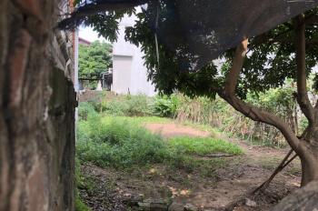 Chính chủ cần tiền nên muốn bán nhanh lô đất diện tích 137m2 tại thôn Vĩnh Thanh, Xã Vĩnh Ngọc