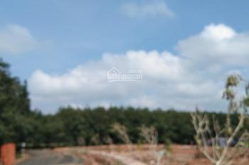 Bán đất thị trấn Tân Phú - Đồng Phú - Bình Phước