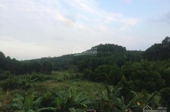 Bán lô nhà đất 7900m2 thuộc Đồng Hỷ, giá rẻ, thích hợp kho xưởng, biệt thự nhà vườn