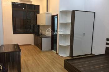 Cho thuê căn hộ 1 phòng ngủ cao cấp Lê Thánh Tông, 30m2 - 45m2, giá 8 - 10 tr/th. LH: 0369453475