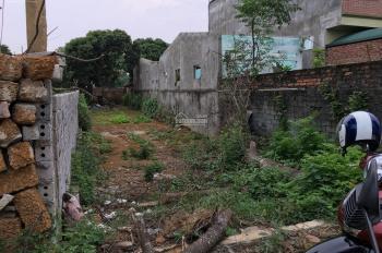 Cần bán 3 lô đất tại thôn 8 Kim Bông, Tân Xã, diện tích từ 150m2 đến 362m2. LH chị Dương 0975205182