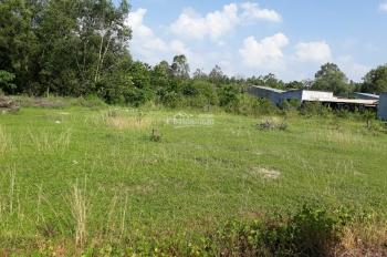 Bán đất chính chủ SHR, giá rẻ, ngay khu dân cư, trung tâm 25C, đường cầu Cát Lái, cai tốc BL-LT, VĐ3