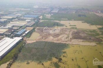Chính chủ cần bán đât công nghiệp 10.000m2, 20.000m2 tại KCN Phố Nối A, Mỹ Hào, Hưng Yên