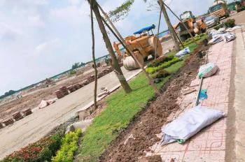 Đất nề KCN Bàu Bàng, chỉ 250tr/nền (40%), CK 5 chỉ vàng, sổ đỏ thổ cư 100%, XDTD, LH: 0981633644