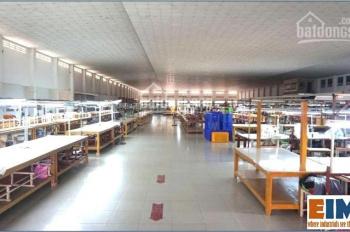 30,000m2 nhà xưởng dệt may cần bán tại Tây Ninh - thuận tiện giao thông TP. HCM