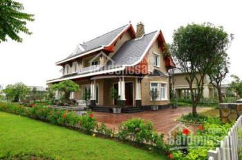 Cần tiền bán nhanh vài lô đất giá chỉ 499tr/lô, gần biển ông lang, đầu tư ngay 0983391232!!