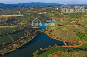 Khu biệt thự Compound Green Valley chỉ 450 triệu/500m2, sổ hồng riêng từng nền. LH 0902580736