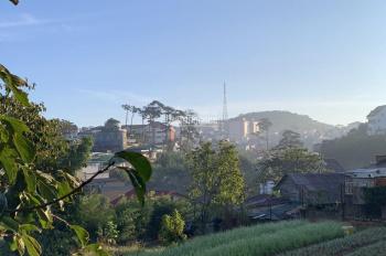 Bán đất chính chủ 2 mặt tiền đường Đống Đa, phường 3, Thành Phố Đà Lạt, 2000m2, giá 80 tỷ, TL