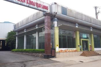 Cho thuê nhà xưởng sản xuất, showroom, kho, đã đầy đủ cơ sở vật chất
