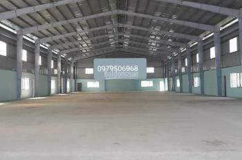 Cho thuê kho 300m2 Lũy Bán Bích, Tân Phú. LH 0979 506 968