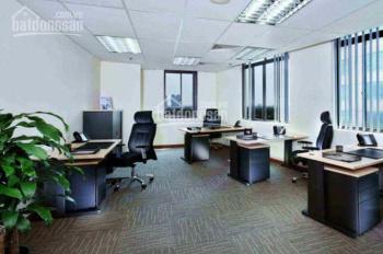 Cho thuê văn phòng mới, giá rẻ tại Tân Bình. 35m2. 6.5tr/tháng. Gọi ngay: 0332806838