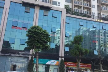 Cần cho thuê nhà biệt thự sang chảnh, long lanh ở Lê Văn Thiêm