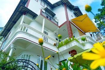 GĐ cần bán villa homestay, tại đường Hoàng Hoa Thám, P10, Đà Lạt diện tích: 300m2 xây dựng sổ riêng