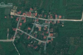 Cần bán 3 lô đất thổ cư xóm 8 Đông Dư, Gia Lâm, Hà Nội, DT 46m2, 101m2, 134m2 cơ hội sinh lời
