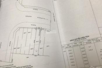 Đất huyện Bình Chánh 140m2 xây biệt thự rất tuyệt vời, sổ hồng riêng, cần tìm chủ gấp.