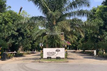 Danh sách chính chủ bán chuyển nhượng biệt thự Mimosa Ecopark, cần bán nhanh giá tốt