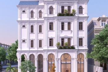 Cần bán gấp nhà mới Hưng Gia gốc 02 mặt tiền đường Phan Huy Ích và Phạm Văn Nghị, giá tốt 65 tỷ