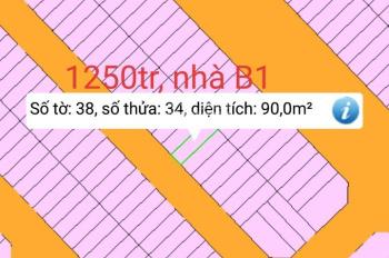 Bán đất các lô trong Lavender Vĩnh Cửu, LH: 036567580 Mr Nhờ