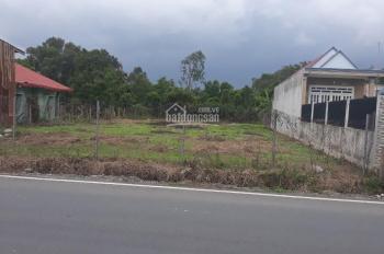 Bán nhanh 1200 m2 đất ở lô 2 mặt tiền đường Thanh Niên, Bình Chánh, chỉ 8,7 tỷ TL