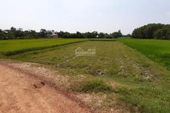 Đất mặt tiền 13x50m, An Ninh Đông, giá rẻ