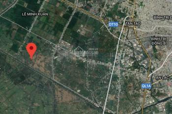 Bán đất thổ vườn 14.000m2 mặt tiền kênh 11 Lê Minh Xuân Bình Chánh. Giá: 1.4tr/m2