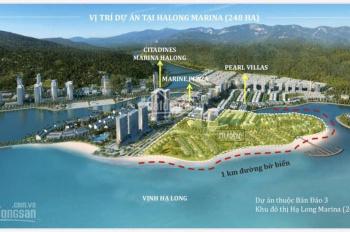 Cơ hội sở hữu căn hộ đẳng cấp bên bờ Vịnh Hạ Long
