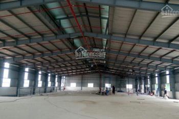 Cần cho thuê gấp kho xưởng 16,000m2 ngay mặt tiền đường Mã Lò, có PCCC cont 40f vào